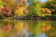 autumn_109